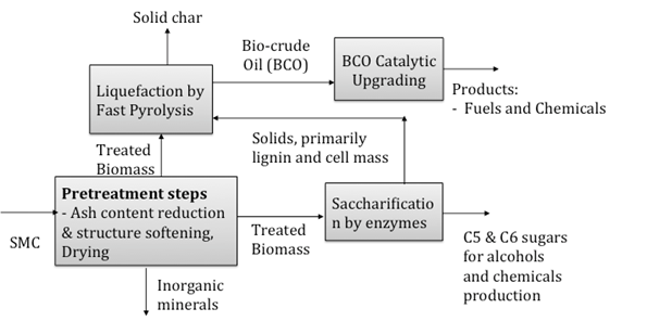IJEPR - Effects of Hydrolysis and Torrefaction on Pyrolysis